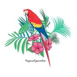 Vector illustration of a bright tropical bird parrot on a floral background. Colorful icon of tropical nature. vector illustration