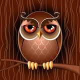 Brown owl on a branch Royalty Free Stock Photo