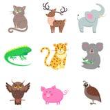 Quail, Pig, Koala, Elephant, Jaguar, Iguana, Deer. Vector illustration of brown owl and quail, pink pig, gray koala and elephant, spotty jaguar, green iguana stock illustration