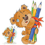 Vector illustration of a brown teddy bear holding in its paws a bunch of pencils Stock Image