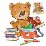 Vector illustration of a brown teddy bear holds books and pencils in a school satchel. Royalty Free Stock Photography