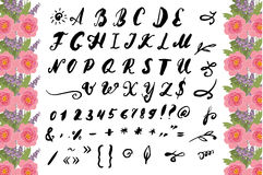 Vector Illustration brush style of calligraphy alphabet. Lowercase letters and numbers Royalty Free Stock Photos
