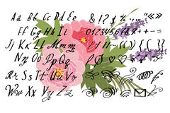 Vector Illustration brush style of calligraphy alphabet. Lowercase letters and numbers Stock Images