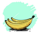Vector illustration of a bunch of bananas Royalty Free Stock Photo