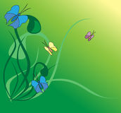 Vector illustration with butterflies Royalty Free Stock Image