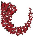 Vector Butterflies Heart Valentine`s Background. Stock Photos