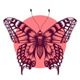 Butterfly in pink circle. Beautiful tattoo butterfly. Symbol of immortal soul. Element Air. Vector illustration of butterfly in circle for design and decoration Royalty Free Stock Photography