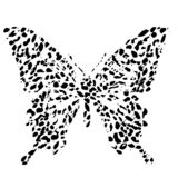 Vector illustration of a butterfly. A logo design element for a collection of T-shirts. Elements for the design of