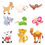Vector Illustration Of Cartoon Animals Stock Photography