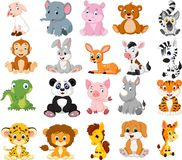 Cartoon animals collection set. Vector illustration of Cartoon animals collection set vector illustration