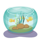 Vector illustration of cartoon aquarium with fishes Royalty Free Stock Photography