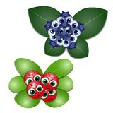 Vector illustration of cartoon blueberry and cowberry royalty free illustration