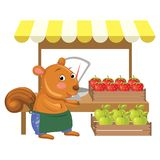 Vector Illustration of Cartoon Greengrocer Squirrel Stock Image