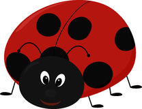 Vector illustration of cartoon Lady bug Stock Photos