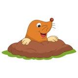 Vector Illustration Of Cartoon Mole Stock Photos
