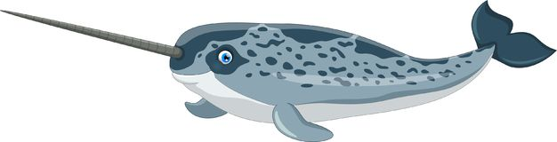 Vector illustration of cartoon narwhal Stock Photography