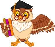 Cartoon owl holding a book stock illustration