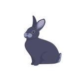 Vector illustration of cartoon rabbit. Drawing vector rabbit Royalty Free Stock Photos