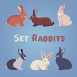 Vector illustration of cartoon rabbits. Eps 10 Royalty Free Stock Images