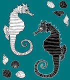 Vector image of the decorative sea horses Royalty Free Stock Photos