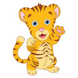 Vector Illustration Of Cartoon Tiger Stock Photography