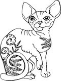Vector illustration of a cat. Black and white portrait of a cat. Stylized Canadian Sphynx stock illustration