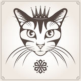 Vector illustration of the cat Royalty Free Stock Images