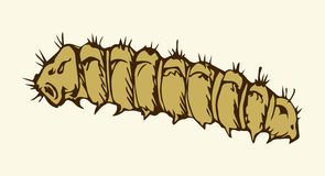 Vector illustration. Caterpillar Royalty Free Stock Photography