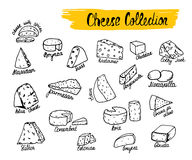 Vector illustration of cheese types. Vector illustration of cheese types in hand drawn style.  on white Royalty Free Stock Photography