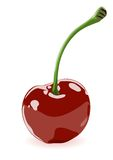 Vector illustration of a cherry Royalty Free Stock Photo