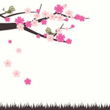 Vector Illustration Cherry Blossom With Bird Royalty Free Stock Photo