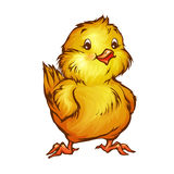 Vector illustration of chick in cartoon style Royalty Free Stock Images