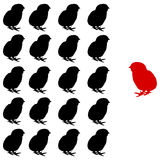 vector Illustration of the chicks group Royalty Free Stock Photos