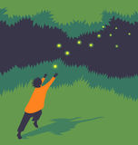 Vector illustration child chasing fireflies. Stylized vector illustration of a child chasing fireflies at night Stock Photos