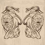 Vector illustration of chimera made in hand drawn style. Mythological magic religion victorian motif, tattoo design element. Heraldry and logo concept art Royalty Free Stock Photo