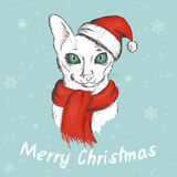 Vector illustration of christmas green eyed cat. It is wearing a red christmas hat and a scarf Royalty Free Stock Photos