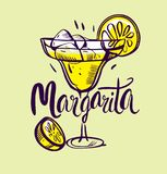 Vector illustration Classics margarita. On white background Stock Photography