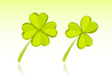 Vector illustration of clover Stock Photo