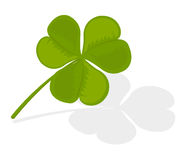 Vector illustration of a clover Stock Photography