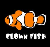 Vector illustration of a clown fish Royalty Free Stock Image