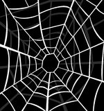 Vector illustration of cobweb. Art Royalty Free Stock Images