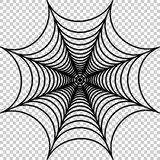 Vector illustration of cobweb. Spider web illustration Royalty Free Stock Photography