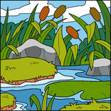 Vector illustration, color background (swamp) Stock Photography