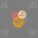 Vector illustration of color orange slices with leaves Royalty Free Stock Images