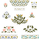 Vector illustration color set blooming plant and border floral. On white background Stock Images