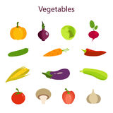 Vector illustration of color set of vegetables Royalty Free Stock Photo