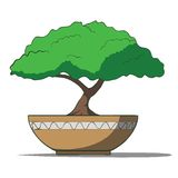 Vector Illustration of colorful bonsai tree. Isolated on white background. This is file of EPS10 format Stock Photo