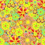 Solorful bright flower seamless background Stock Images