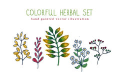 Vector illustration of colorful hand painted set Royalty Free Stock Photos