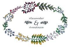 Vector illustration of colorful herbal set royalty free illustration